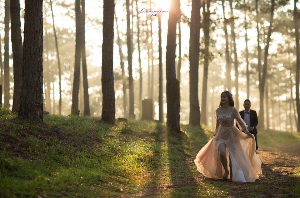 Tiệc cưới tuyệt đẹp và lãng mạn tại Đà Lạt cùng Lavender Wedding Planner