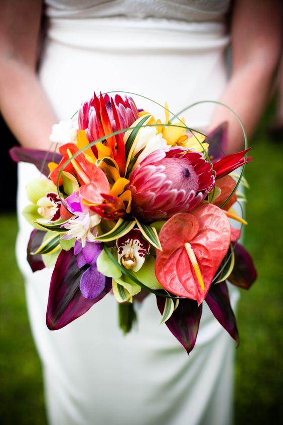 tulip-anthurium