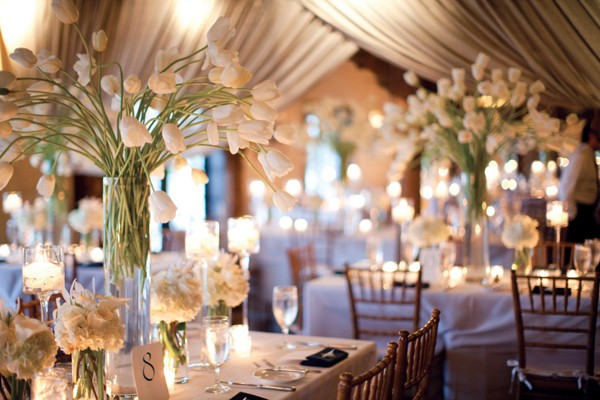 hoa Tulip trang trí tiệc cưới