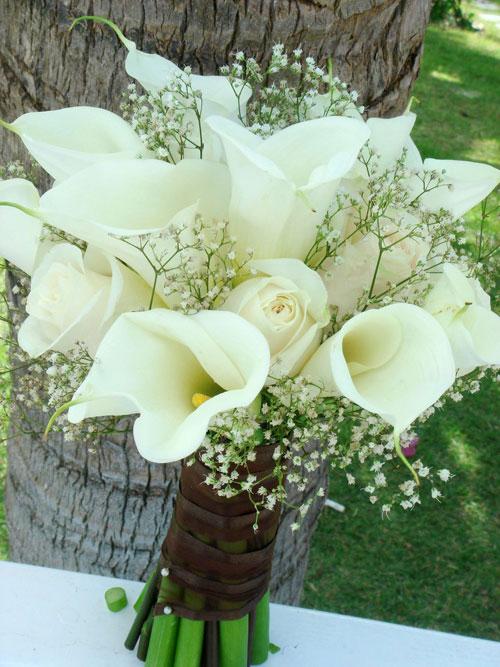 hoa cầm tay trắng-xanh