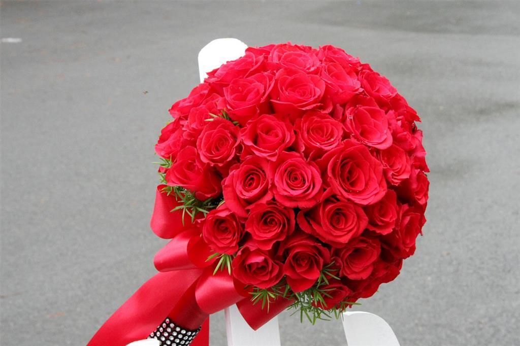 hoa hồng cầm tay
